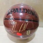 正斯伯丁篮球76-110Y