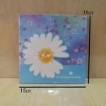 双面印花折纸MJ-633/15cm×15cm/18本/盒
