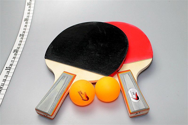 三鼎乒乓球拍A1/B1/40付